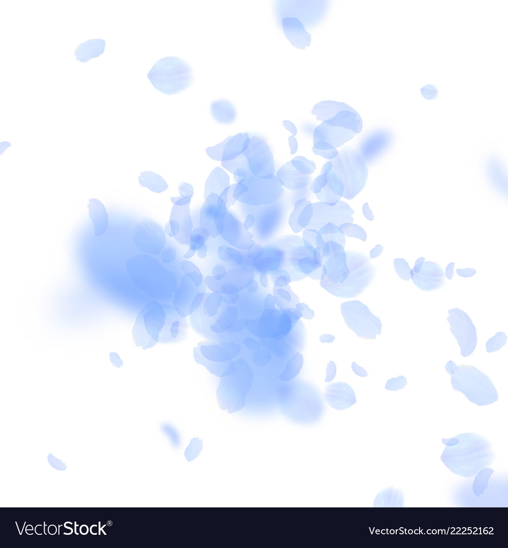 Dark blue flower petals falling down royalty free vector dark blue flower petals falling down vector image izmirmasajfo