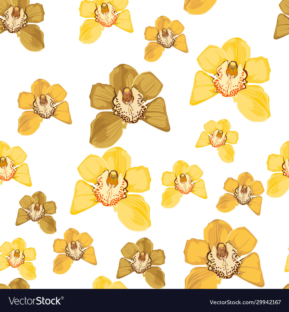 Set yellow orchid phalaenopsis floral seamless
