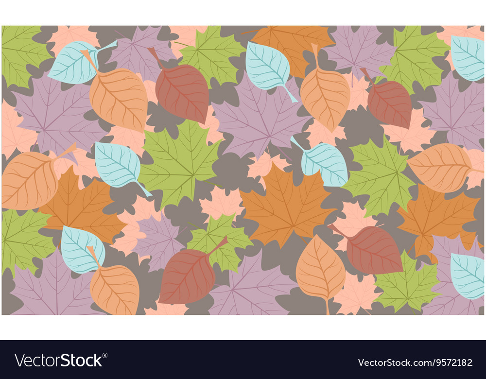Autumn background colored leaves