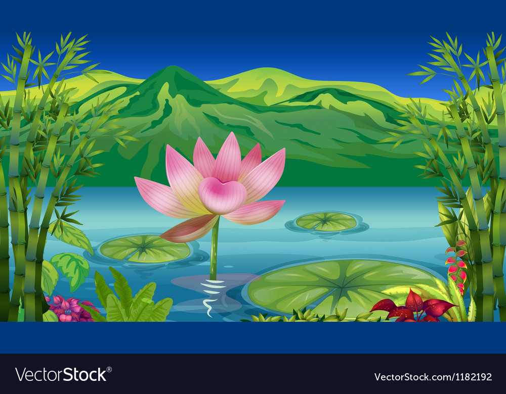 Cartoon Lotus Flower Vector Image On Vectorstock