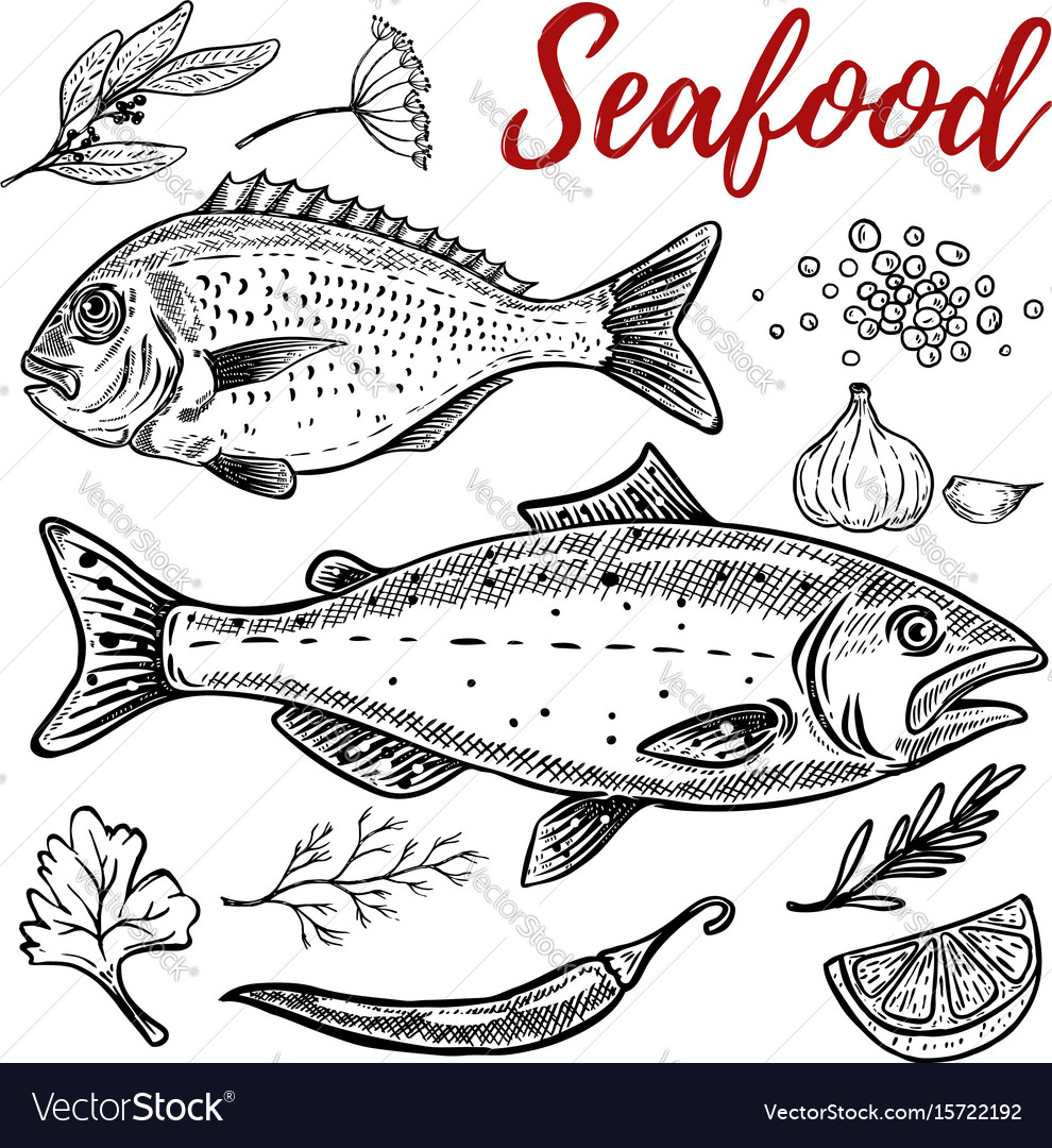 Set of hand drawn seafood isolated on white