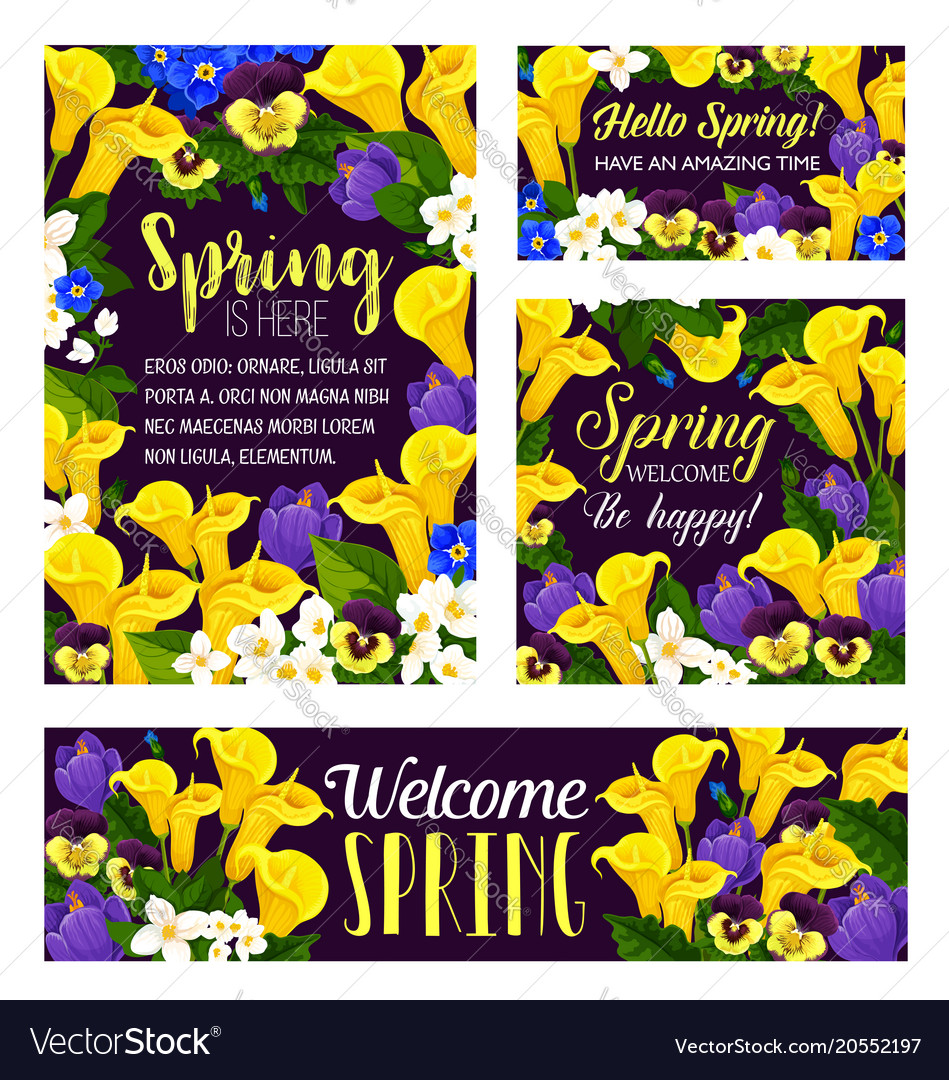 Spring Flowers Seasonal Greeting Posters Vector Image