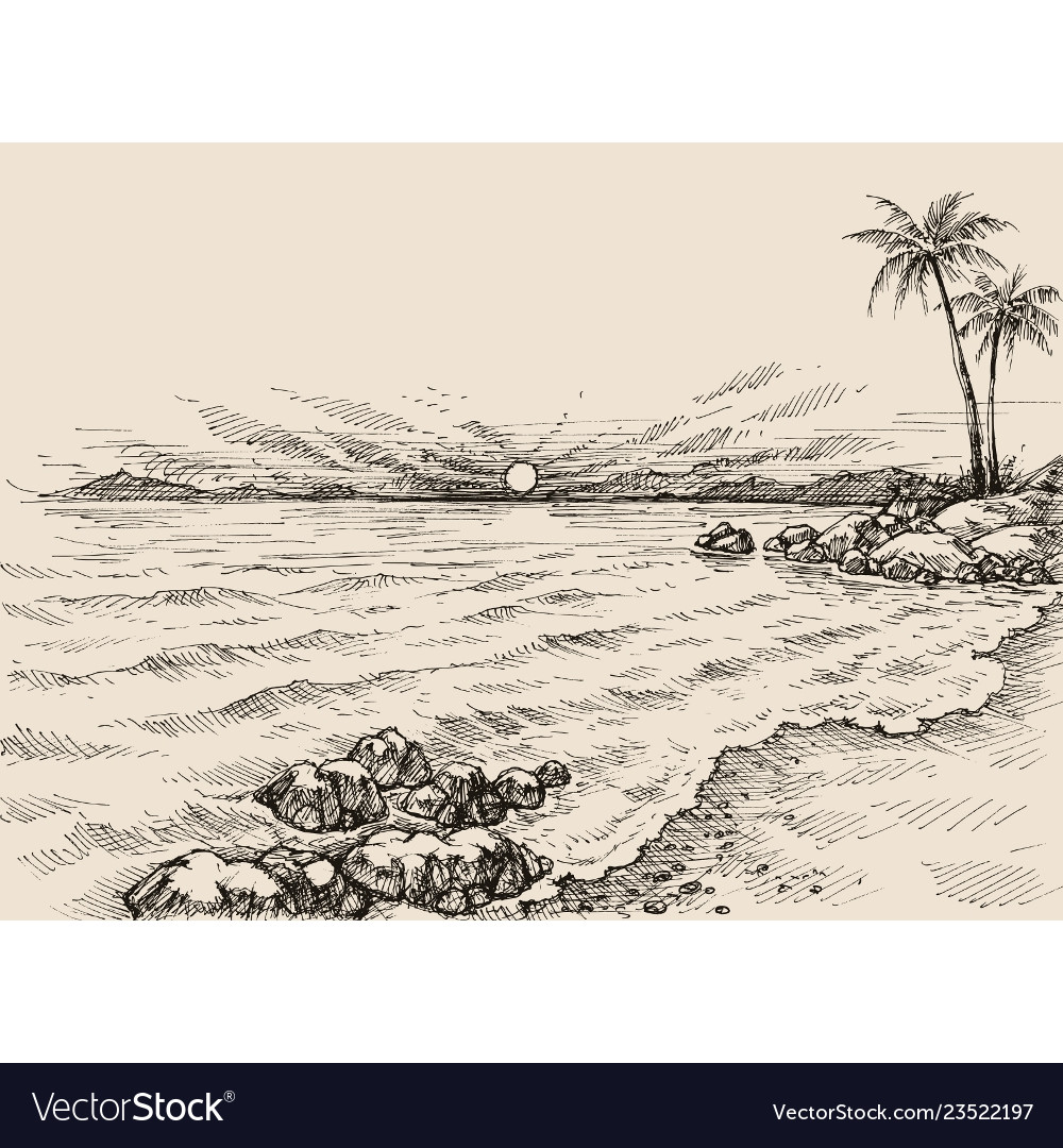 Sunrise on the beach drawing sea view and palm