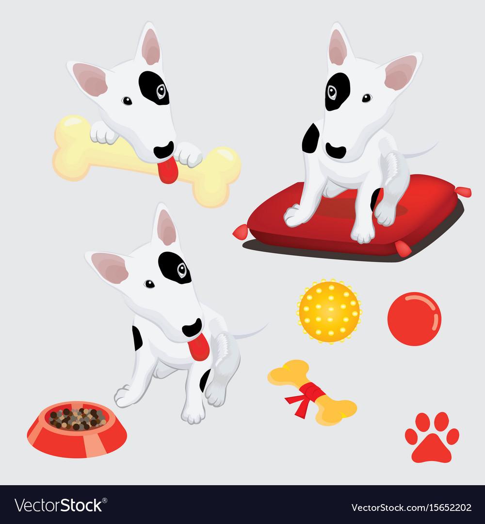 Bull terrier vector image