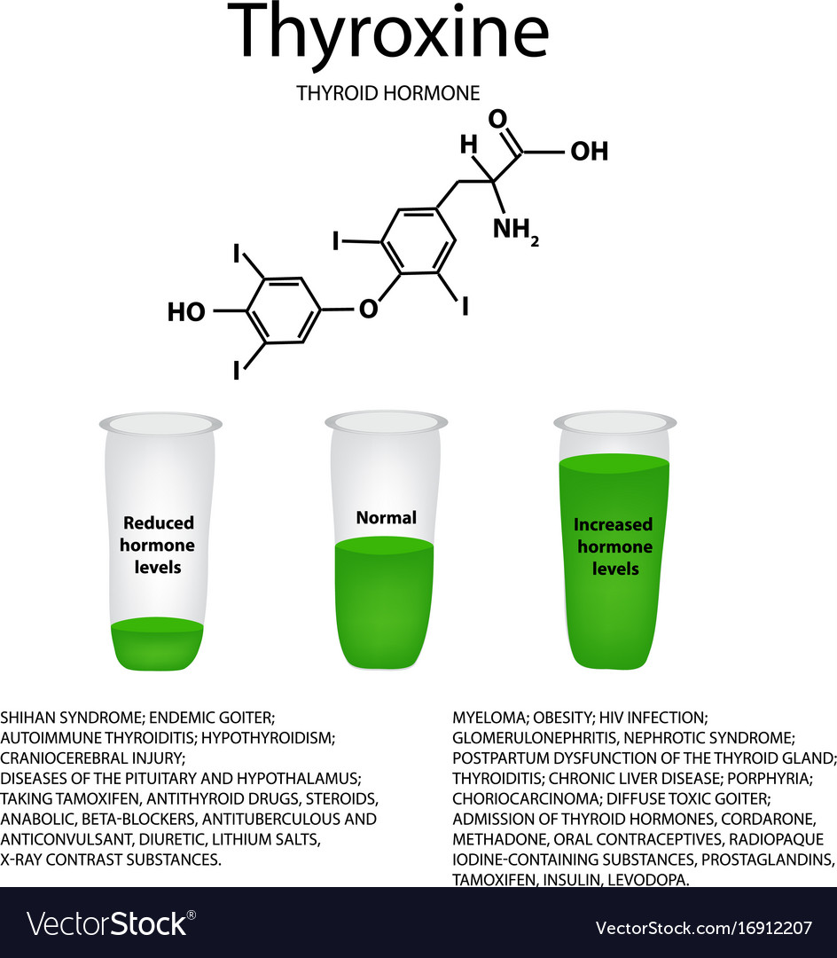 Chemical Molecular Formula The Hormone Thyroxine Vector Image