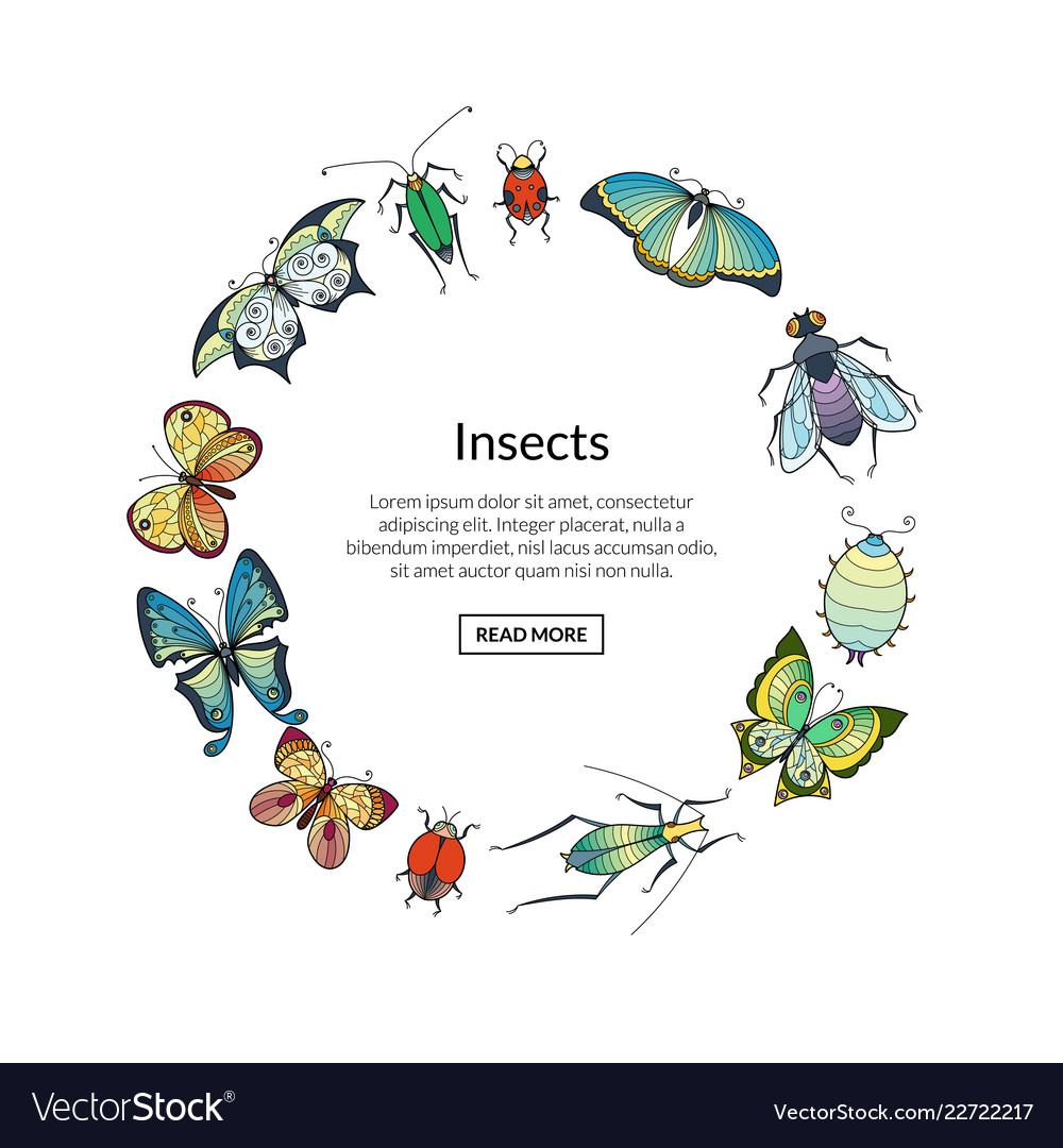 Hand drawn insects in circle shape