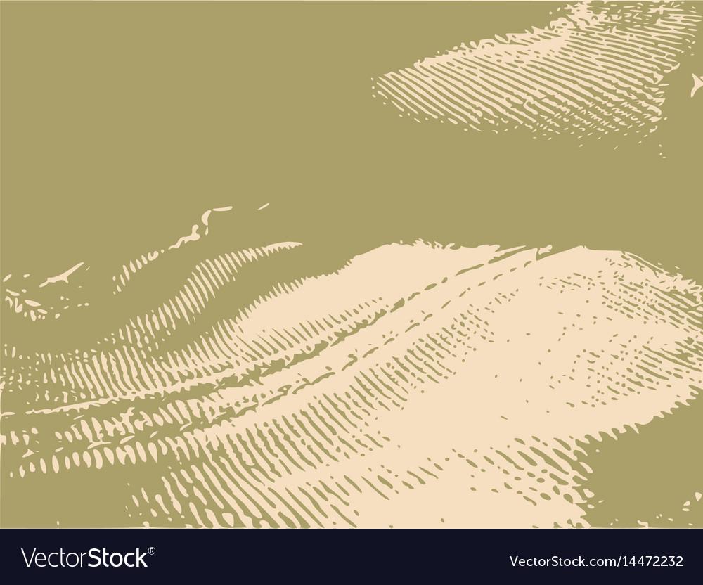 Distress overlay background grunge fiber texture