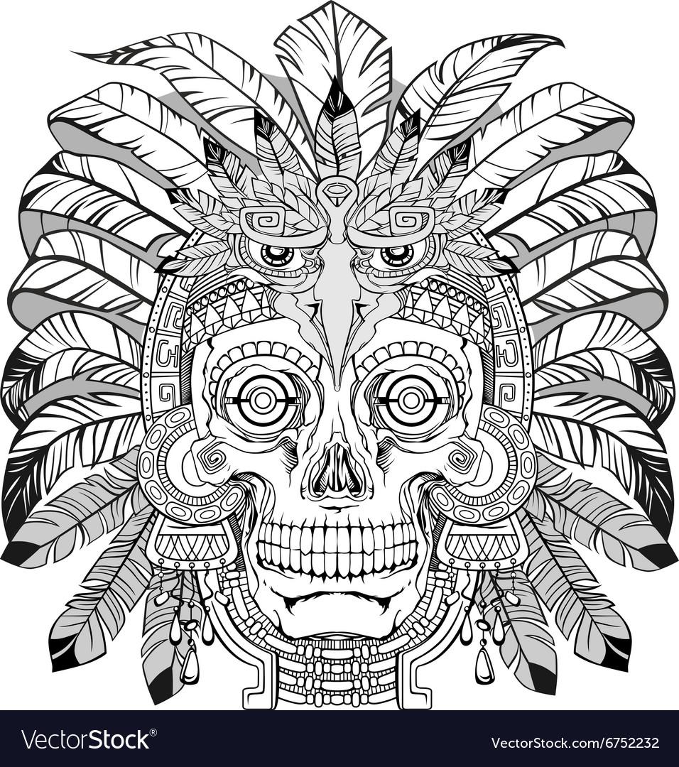 Skull of native american vector image