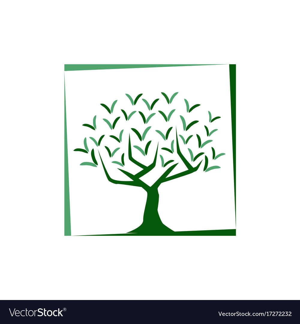 Tree illutration