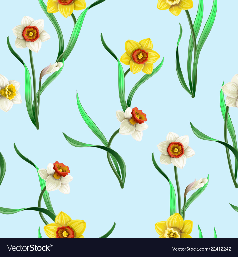 Seamless pattern with white and yellow daffodils