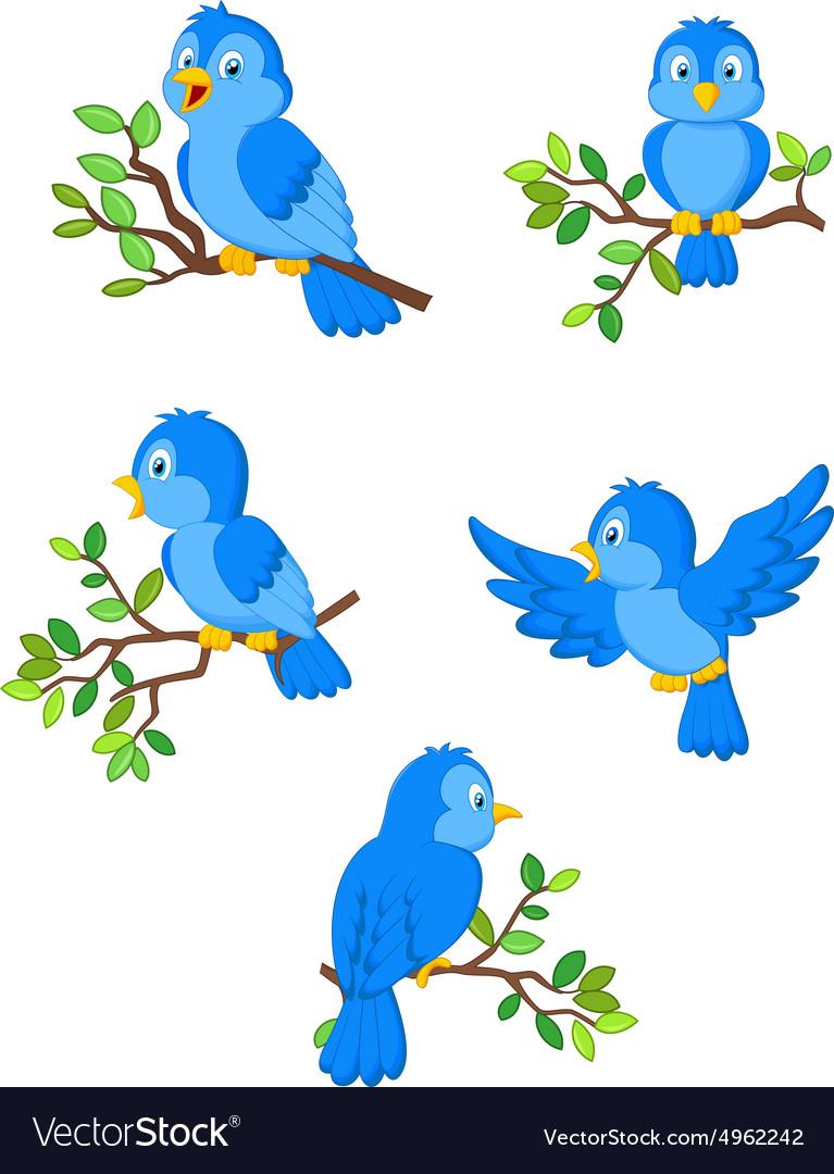 Set of cute cartoon birds