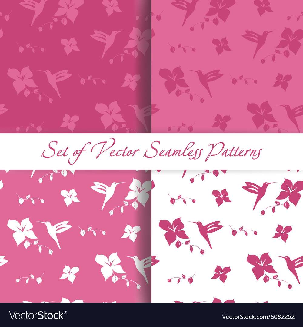 Set of Seamless Backgrounds with Hummingbird