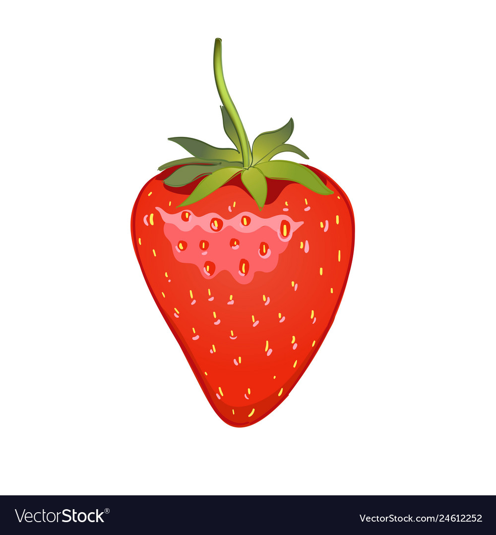 Strawberry realistic icon isolated on white