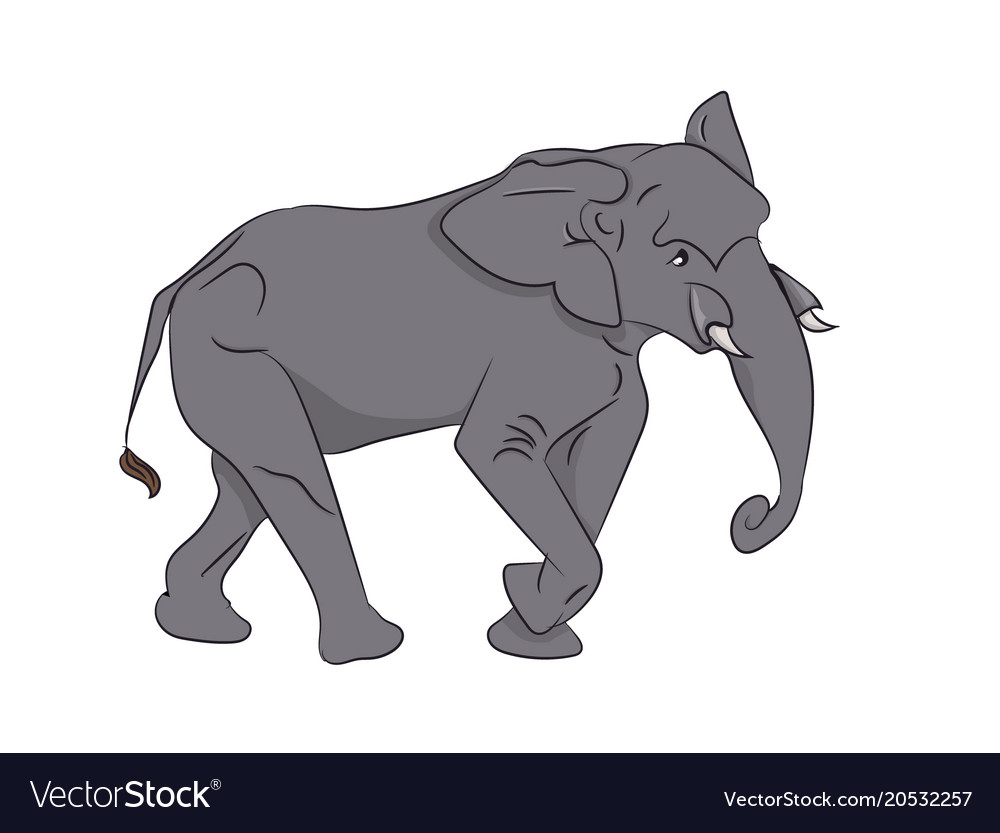 Elephant color Royalty Free Vector Image - VectorStock