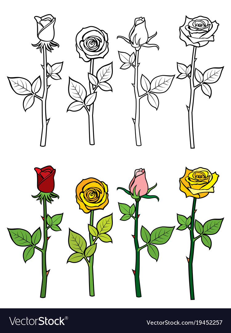 Hand drawn rose coloring page Royalty Free Vector Image