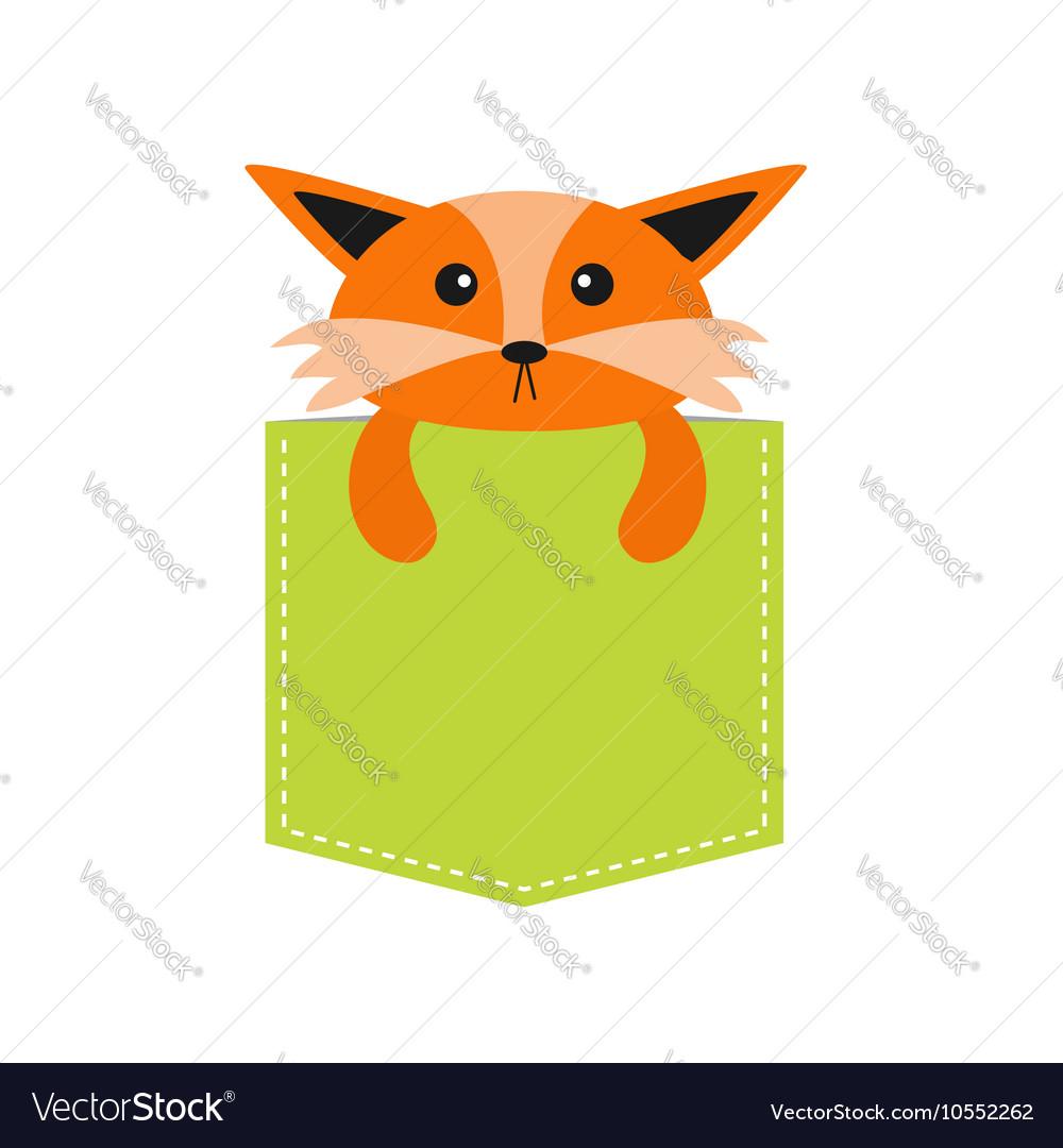Fox in the pocket Cute cartoon character Dash vector image