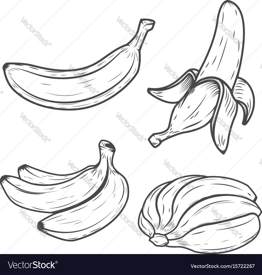 Set of banana icons isolated on white background
