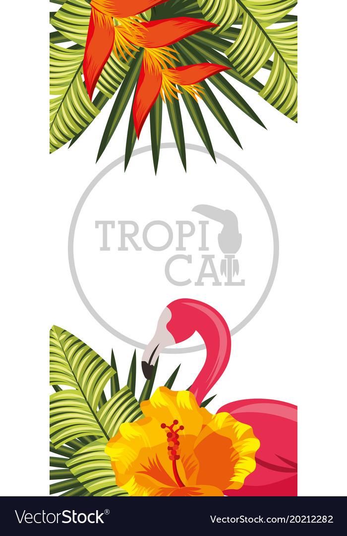 Tropical black background