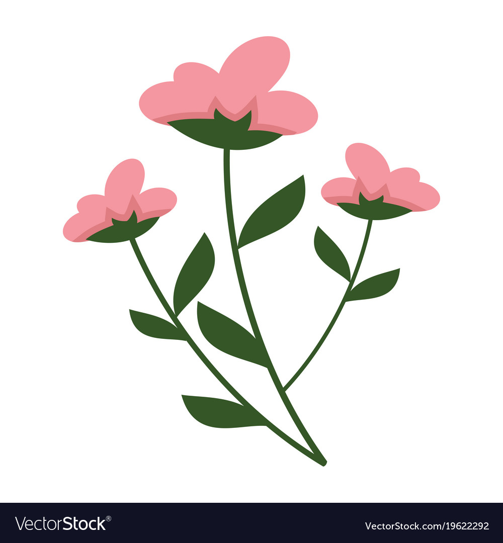 simple flowery plant graphic royalty free vector image