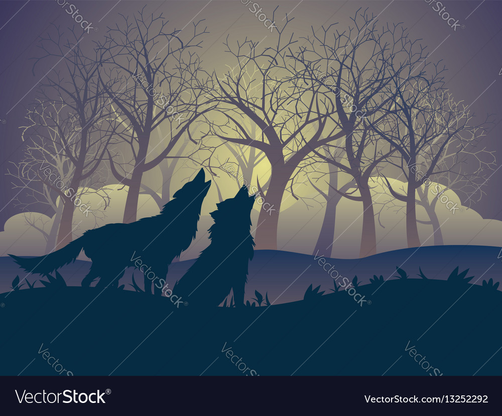 wolf howling in the night forest royalty free vector image