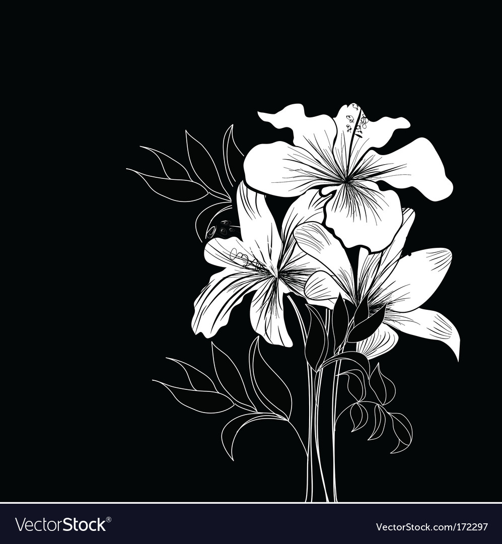 flowers background black. white flowers background.