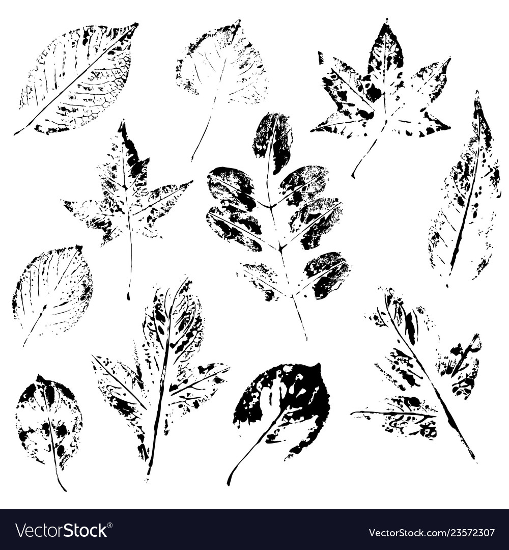 Pattern with stamp leaves