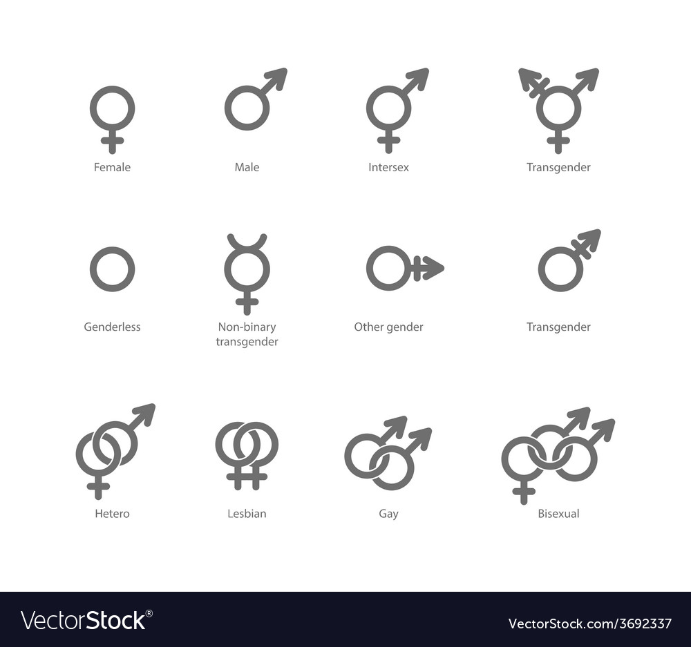 Gender symbol icons vector image