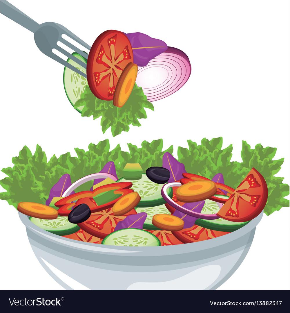 Salad vegetables organic food harvest