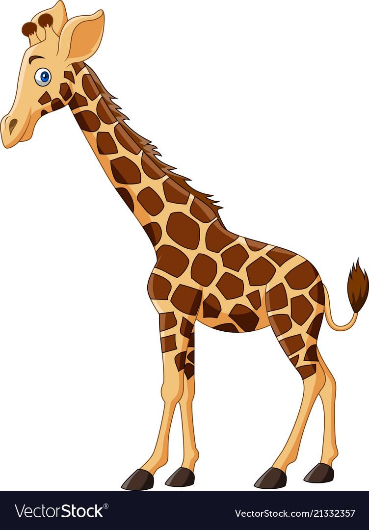 Cartoon giraffe isolated on white background Vector Image