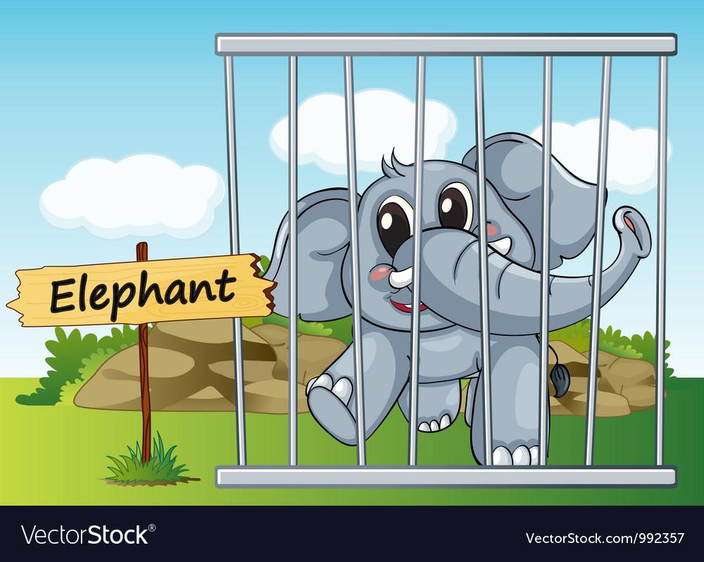 Cartoon Zoo Elephant Royalty Free Vector Image