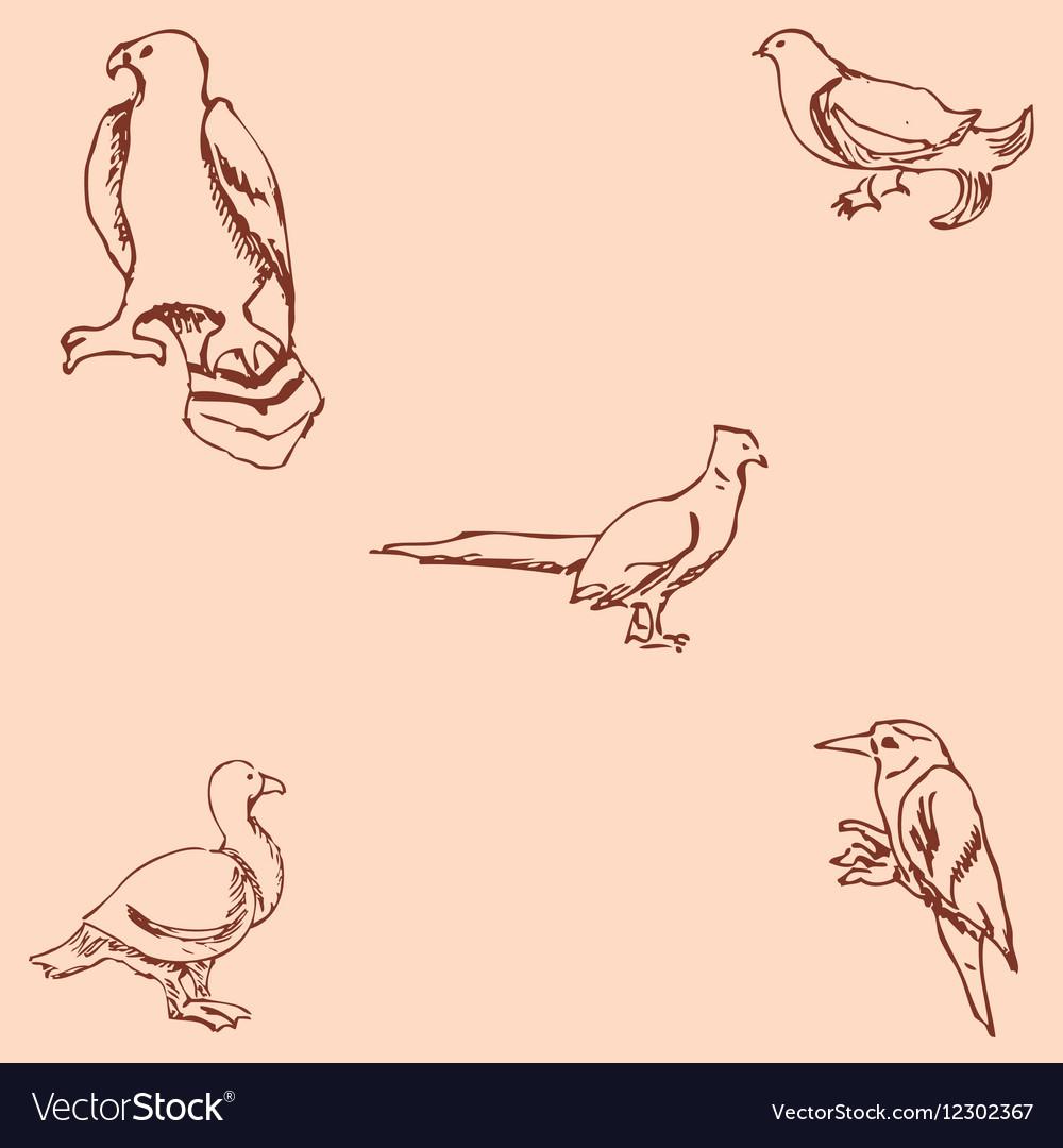 Birds Pencil sketch by hand Vintage colors