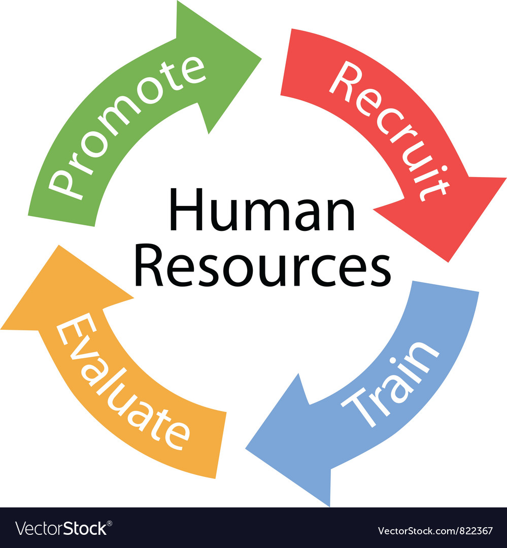 Human Resources cycle