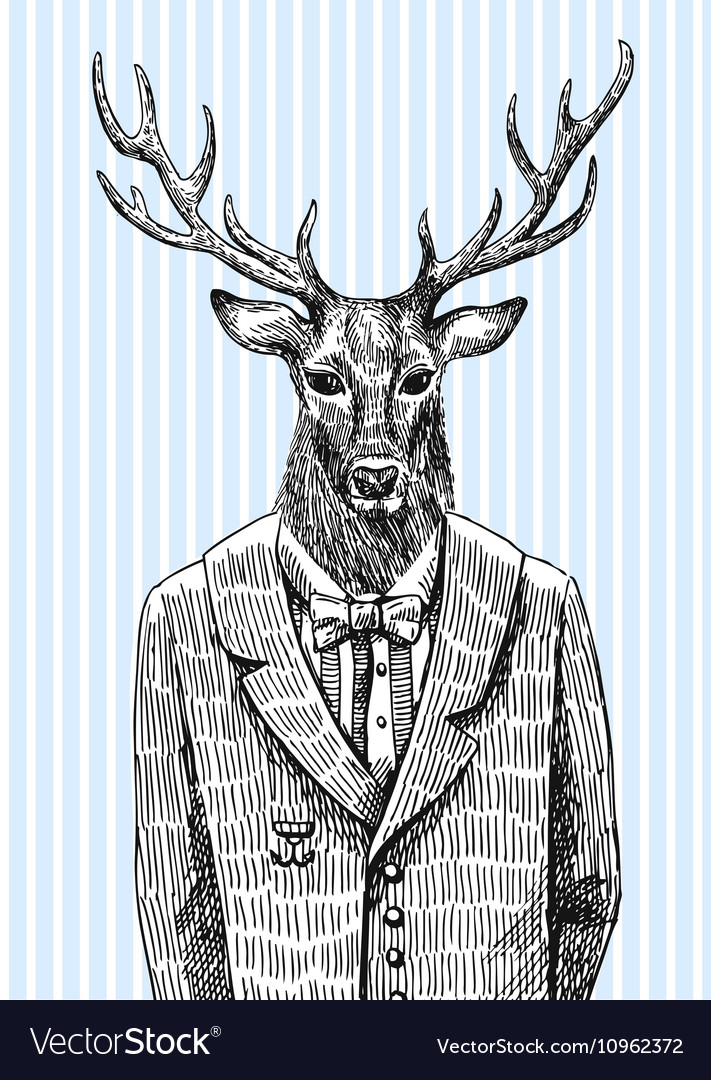 Deer in jacket