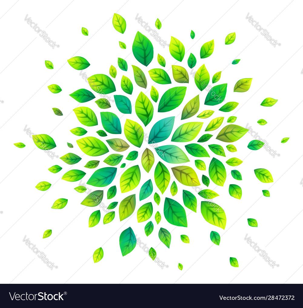 Green cartoon style leaves splash