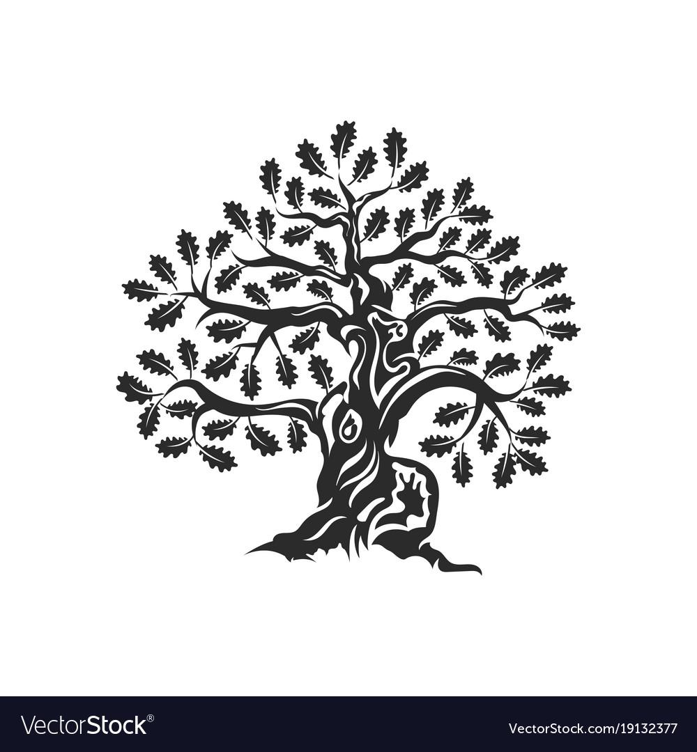 huge and sacred oak tree silhouette logo badge vector image rh vectorstock com oak tree vector image oak tree vector art