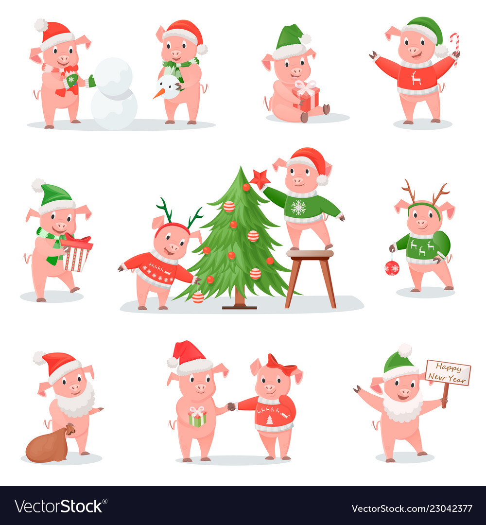 Pig in christmas hat as symbol of new year 2019