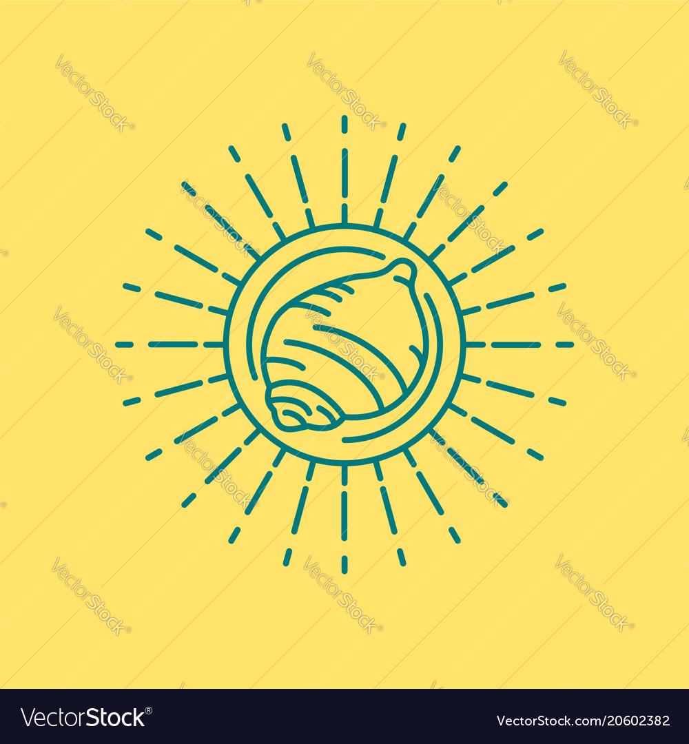 Summer beach sea shell icon design in line art