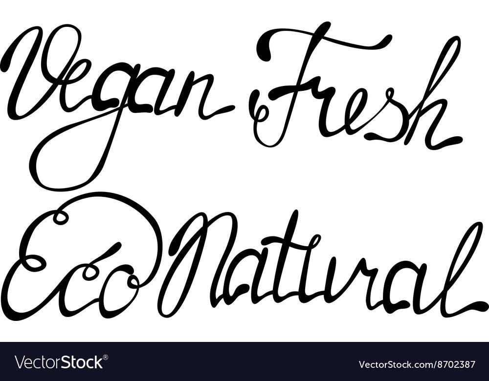 Set of vegan eco natural fresh lettering