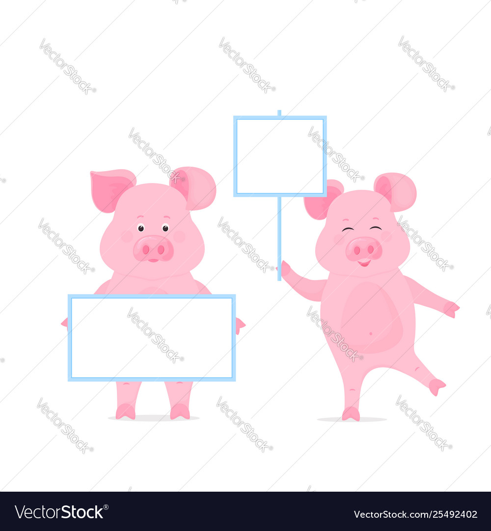 Pig hold a blank sign clean poster empty poster
