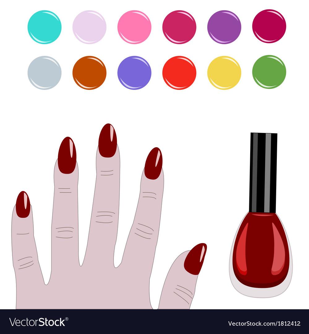 Palette Nail Polish Vector Image