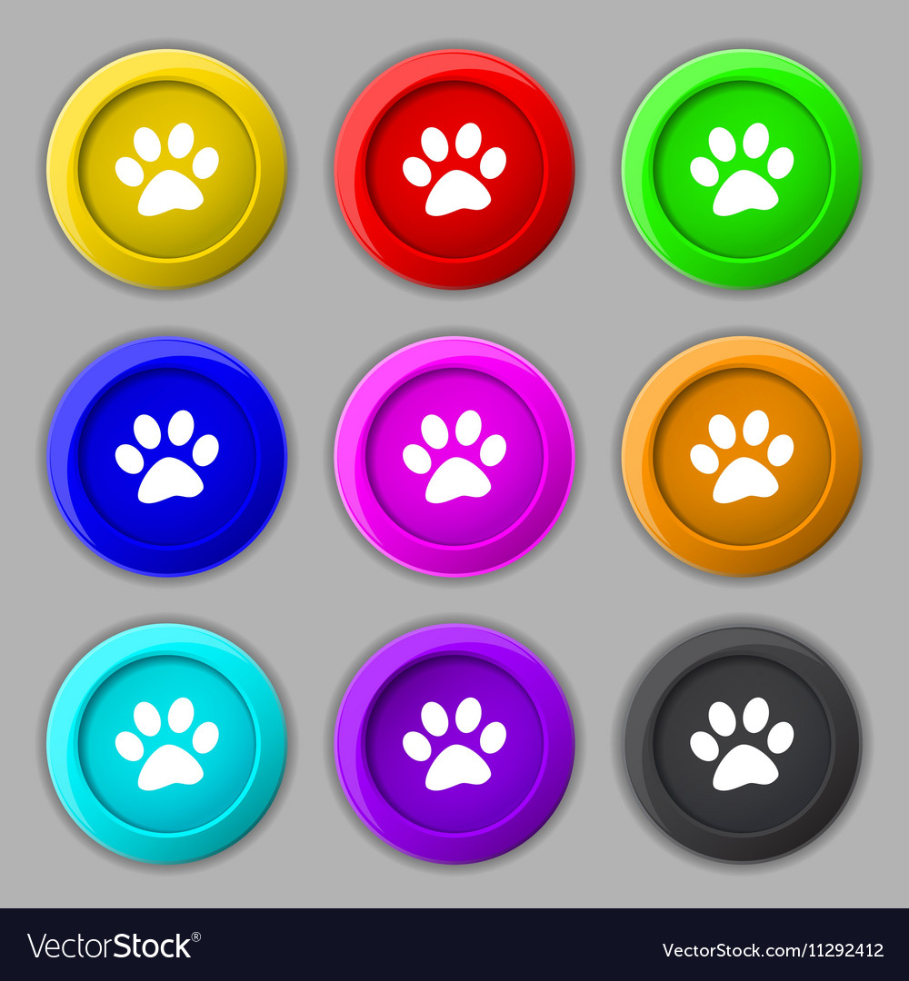 Paw icon sign symbol on nine round colourful