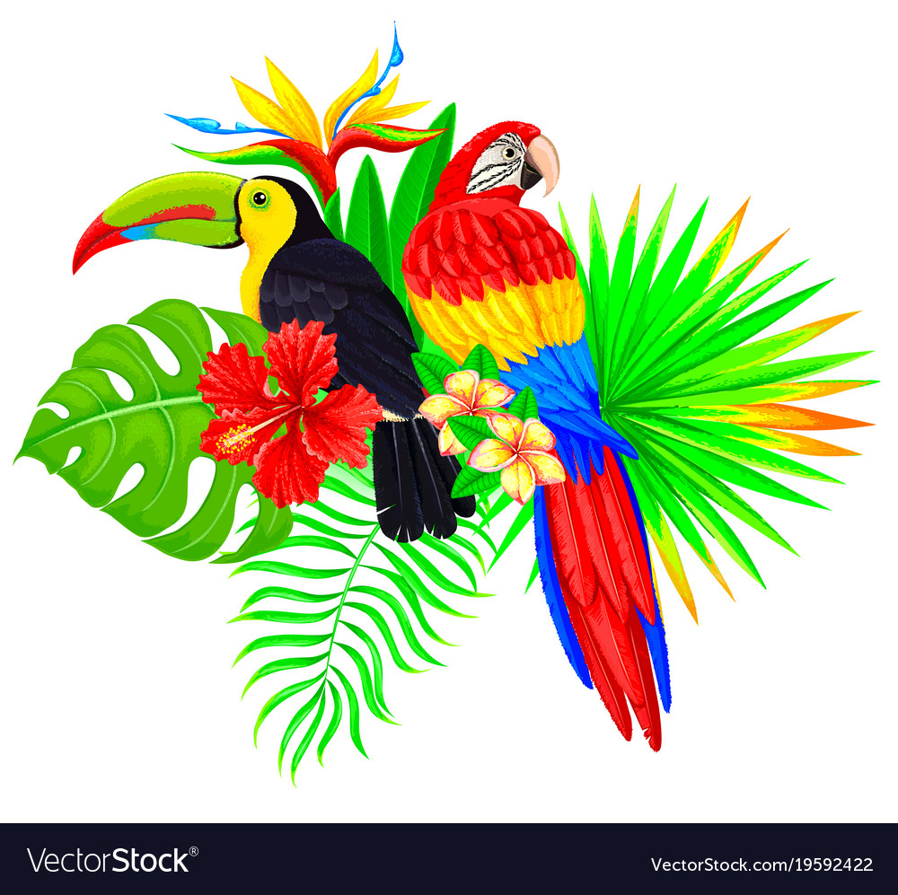 Bright tropical composition with parrot toucan