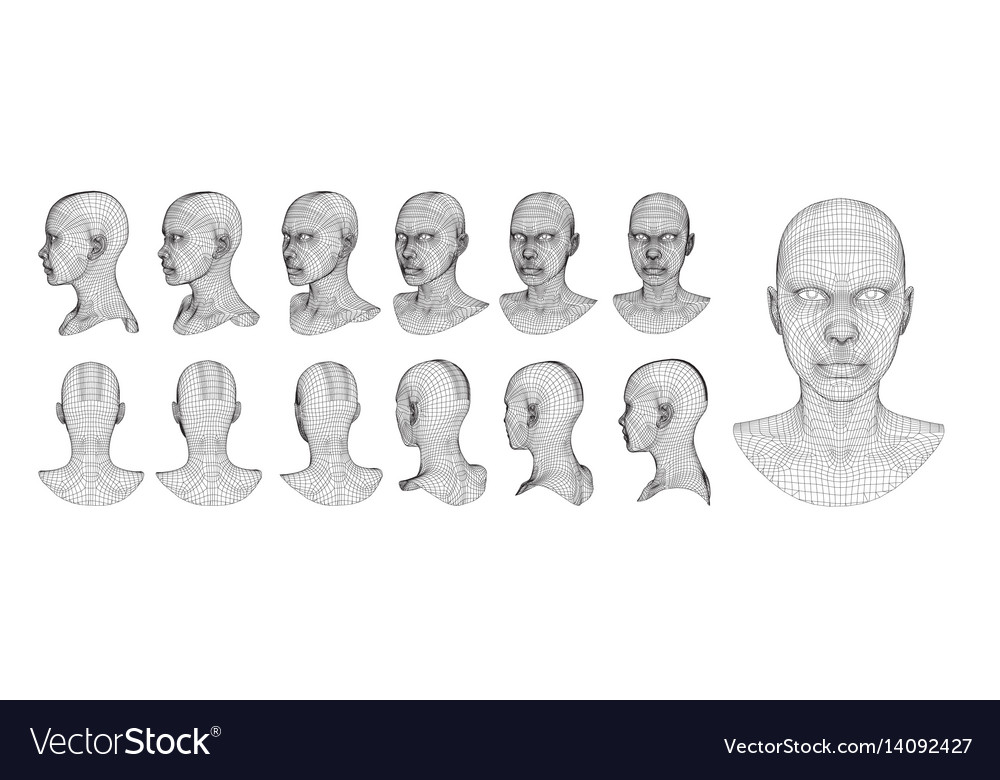 Wireframe head 3d model Royalty Free Vector Image