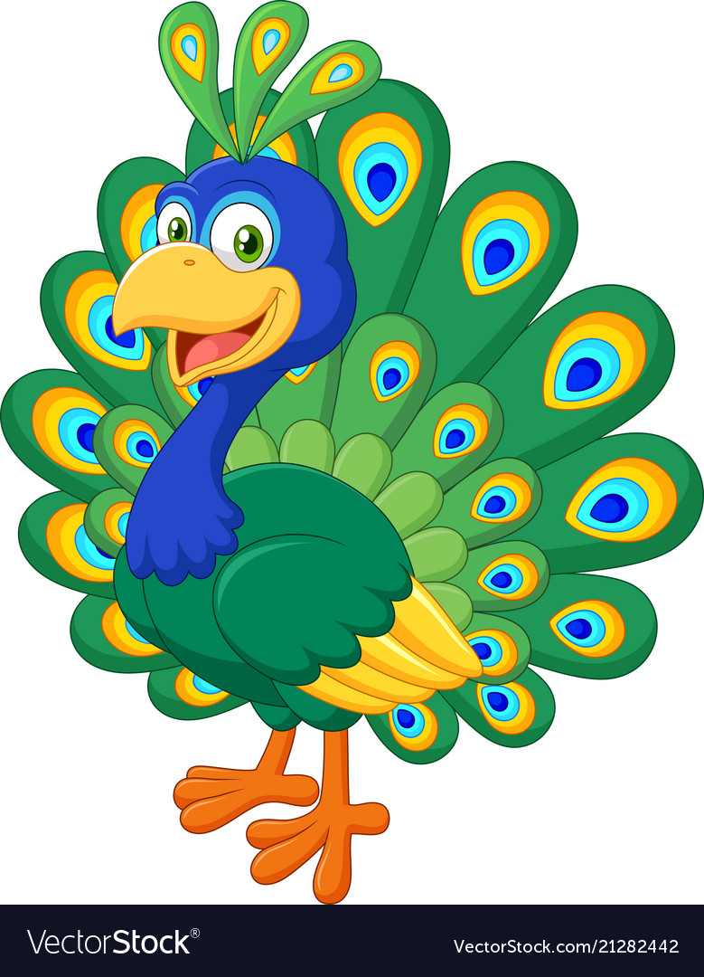Beautiful chicken peacock on white background vector image