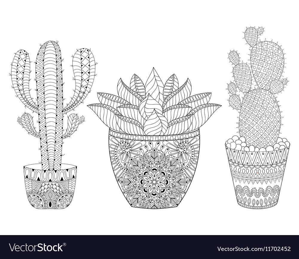 Zentangle Cactus Set Hand Drawn Outline Desert Vector Image