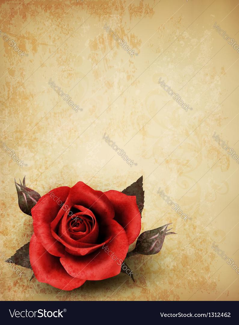 Big red rose on old paper background vector image