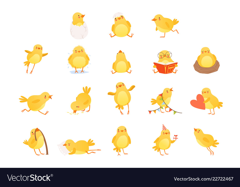 Set funny yellow chicken in various situations