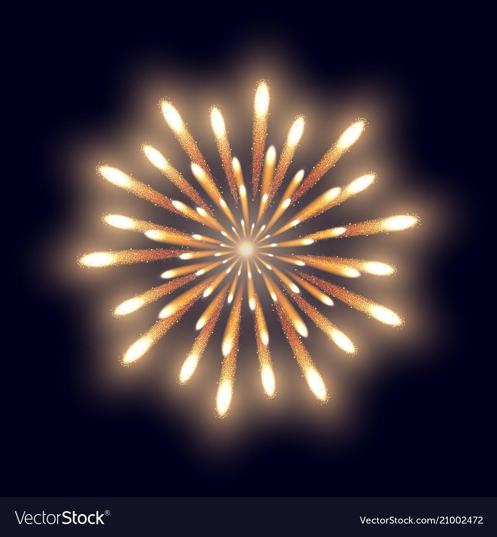 Firework on the dark blue background vector image