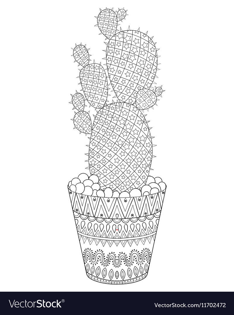 Zentangle Cactus Hand Drawn Outline Desert Plant Vector Image
