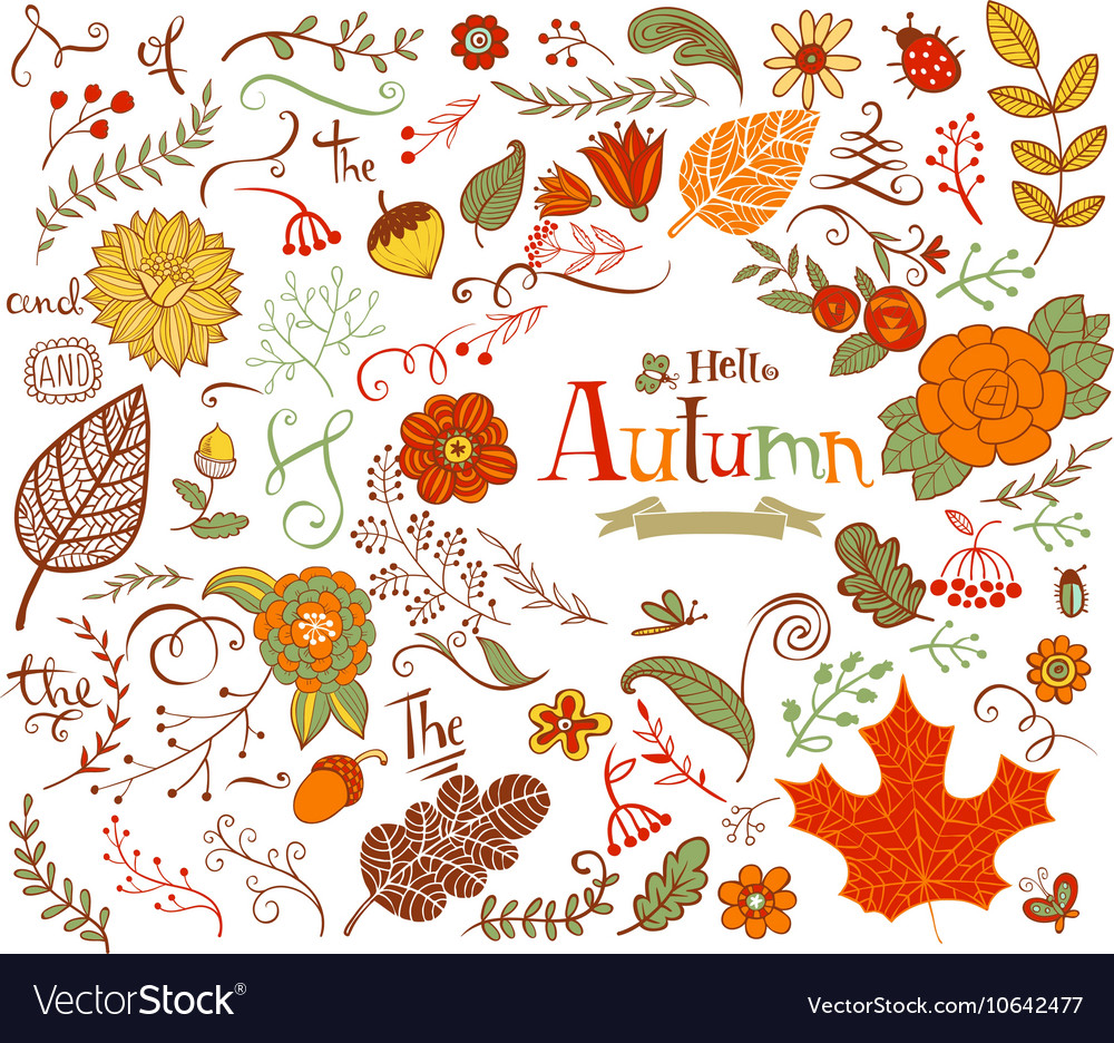 Autumn floral design elements in doodle style
